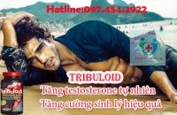 Tribuloid là giải pháp tăng testosterone cho quý ông